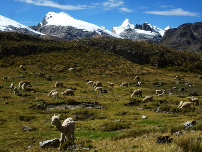 View of the Cordillera Raura