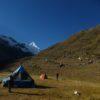 Jancarurish Camp