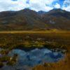 7- color lake